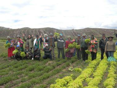 VSF-BOLIVIA