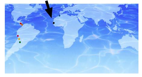 mapa mundi voluntarios